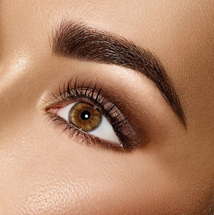 Which Brow Course is the best?