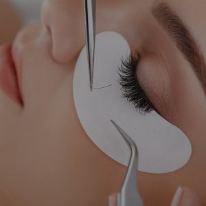 Lash and brow courses